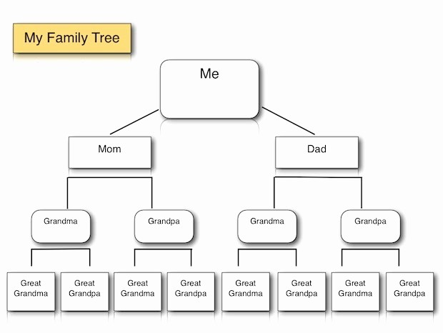 Family Tree Template for Mac Beautiful Family Tree Template Family Tree Template Mac Pages