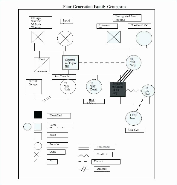 Family Tree Template for Mac Beautiful Medical Genogram Template for Mac social Work Lovely