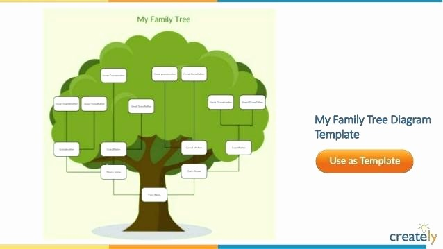 Family Tree Template for Mac Inspirational the Family Tree Diagram Template Chart for Mac