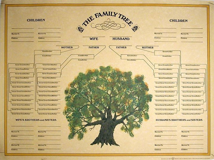 Family Tree Template for Mac Luxury Family Tree Templates for Mac Printable Small Family Tree