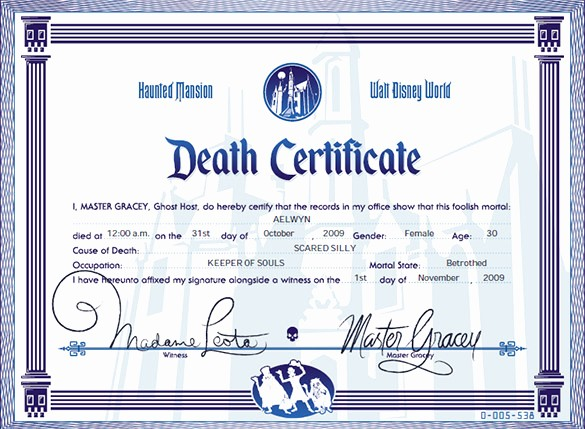 Fee Schedule Template Microsoft Office Lovely Death Certificate Template Microsoft Word
