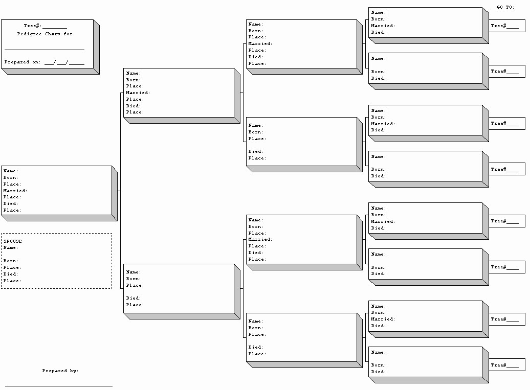 Fillable 6 Generation Family Tree Awesome Blank Family Tree Template