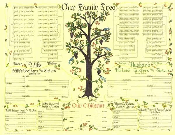 Fillable 6 Generation Family Tree Beautiful 32 Best Family Tree Images On Pinterest