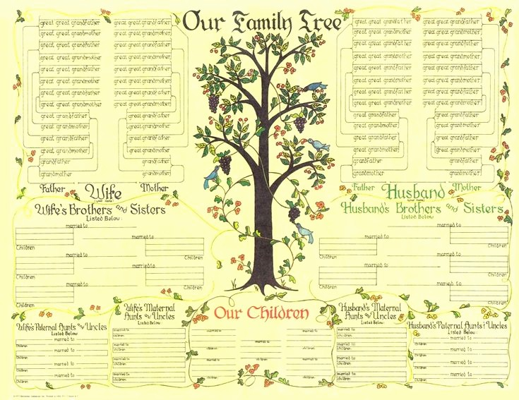Fillable 6 Generation Family Tree Best Of 17 Best Images About Family Tree On Pinterest