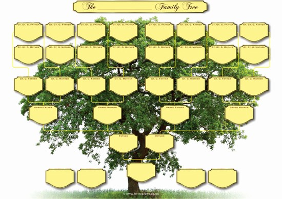 Fillable 6 Generation Family Tree Best Of 5 Generation Family Tree Chart