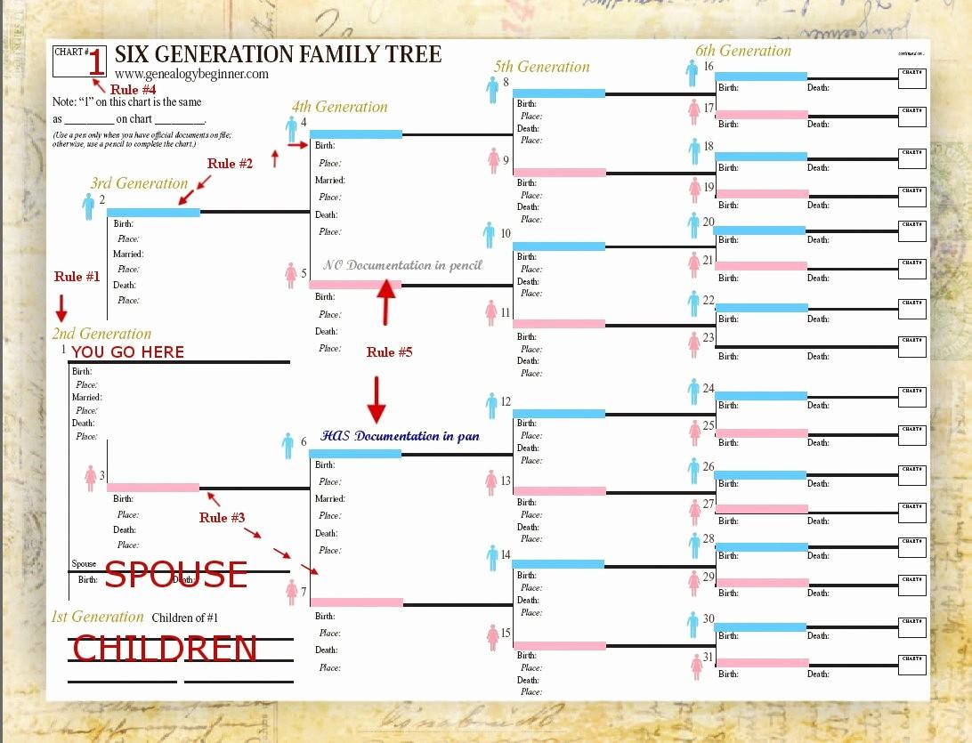 Fillable 6 Generation Family Tree Elegant Free Family Tree Template