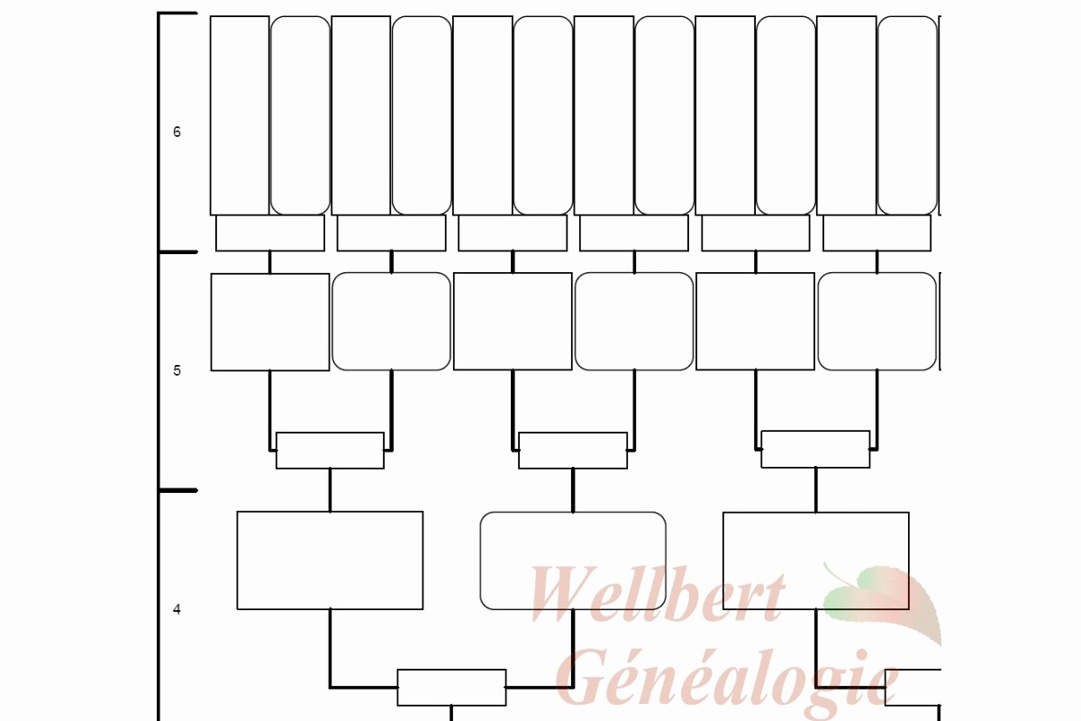 Fillable 6 Generation Family Tree Inspirational 8 Best Of Family Tree Printable Fill In Blank