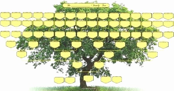 Fillable 6 Generation Family Tree Inspirational How Editable 6 Generation Pedigree Chart – Applynowfo