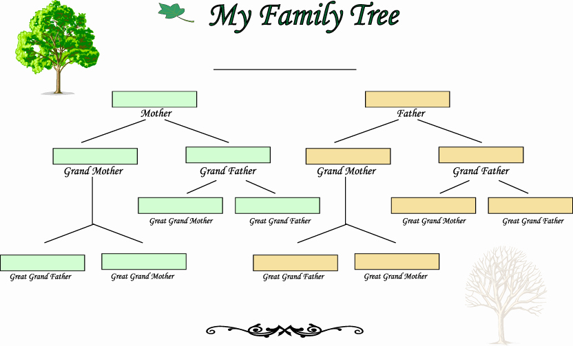 Fillable 6 Generation Family Tree Luxury Blank Family Tree Template