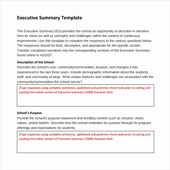 Format for An Executive Summary Elegant 9 Executive Summary Templates for Free Download