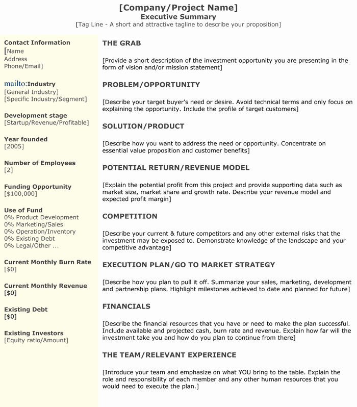 Format for An Executive Summary Fresh 3 Executive Summary Examples for Word and Pdf