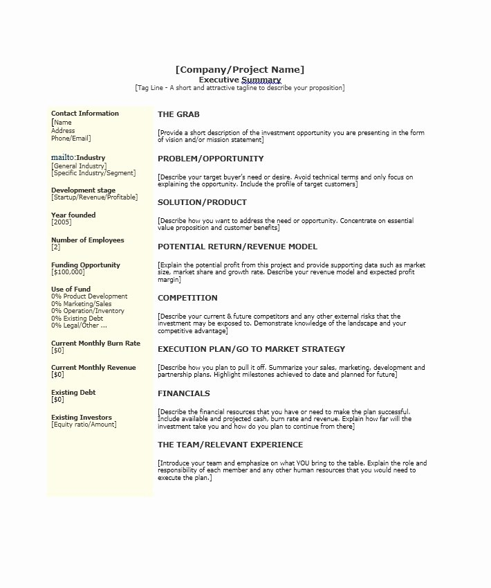 Format for An Executive Summary Fresh 30 Perfect Executive Summary Examples & Templates