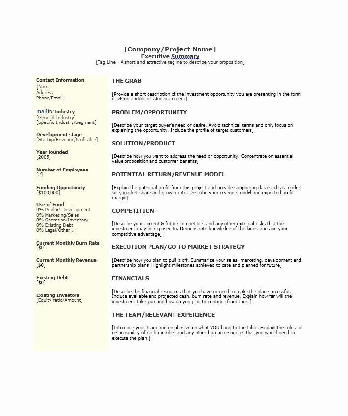 Format for An Executive Summary Fresh 30 Perfect Executive Summary Examples & Templates
