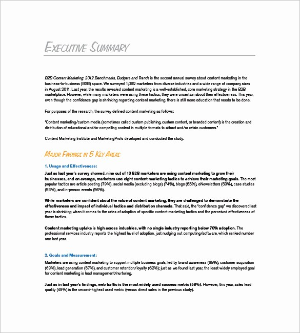 Format for An Executive Summary Inspirational Marketing Plan Executive Summary Template 16 Free Pdf