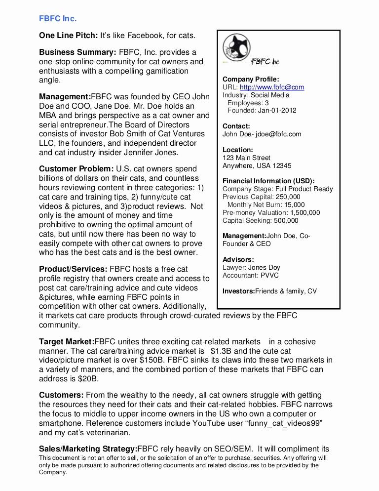 Format for An Executive Summary Luxury Sample Executive Summary
