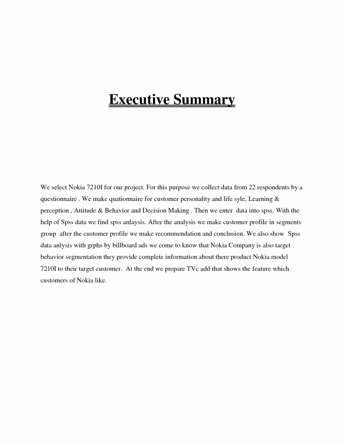 Format for An Executive Summary Unique Executive Summary Resume Example