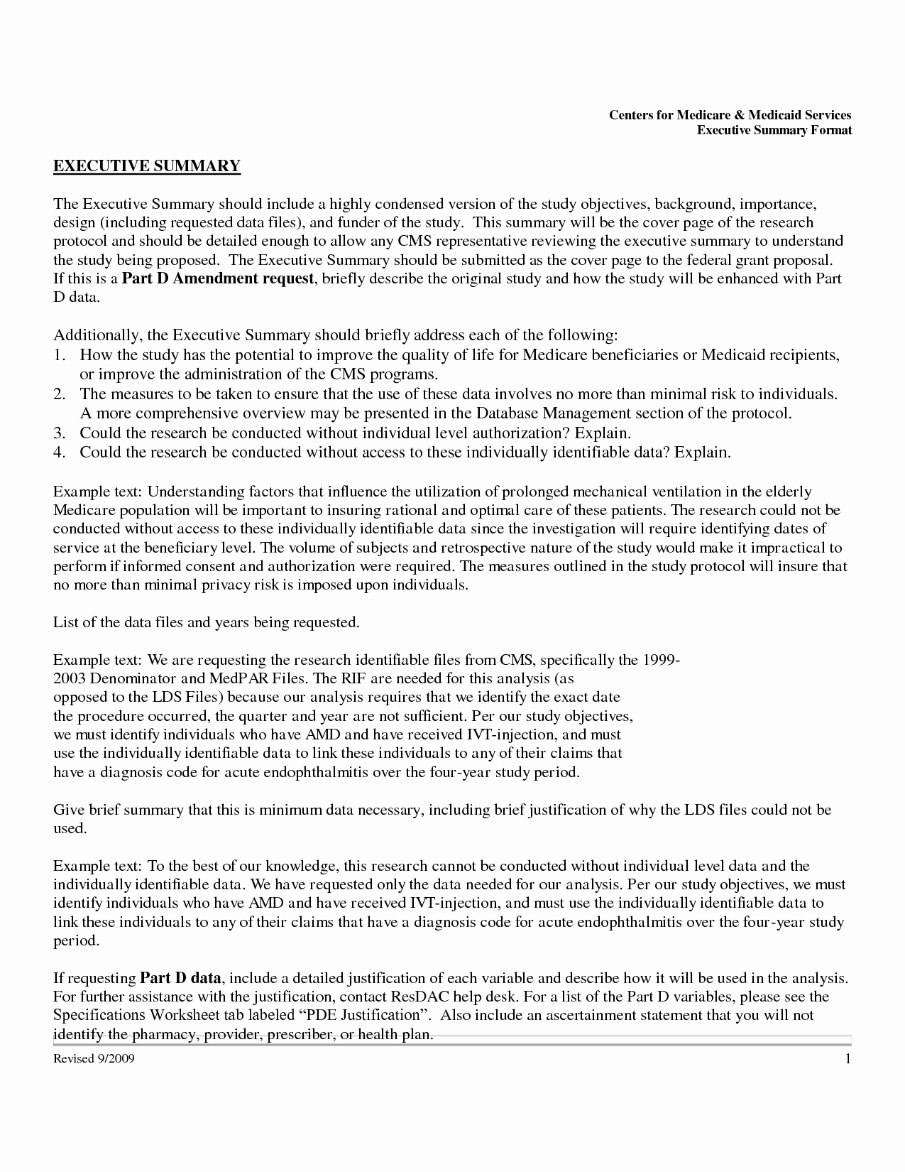 Format for An Executive Summary Unique Executive Summary Template Example Mughals