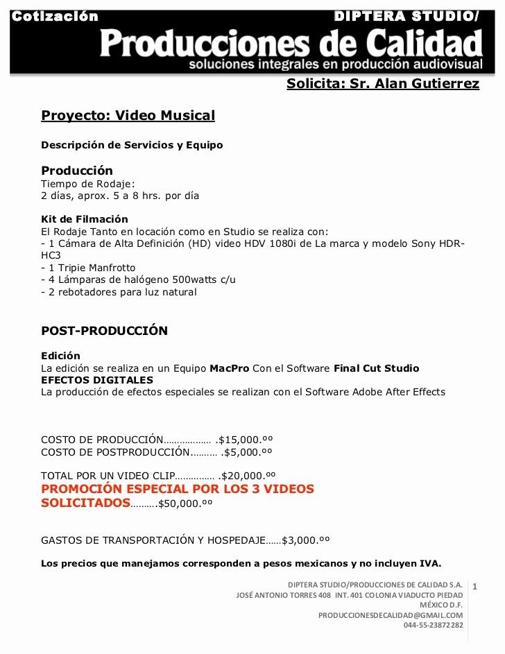 Formato Cotizacion De Servicios Profesionales Elegant Cotizacion Videoclip