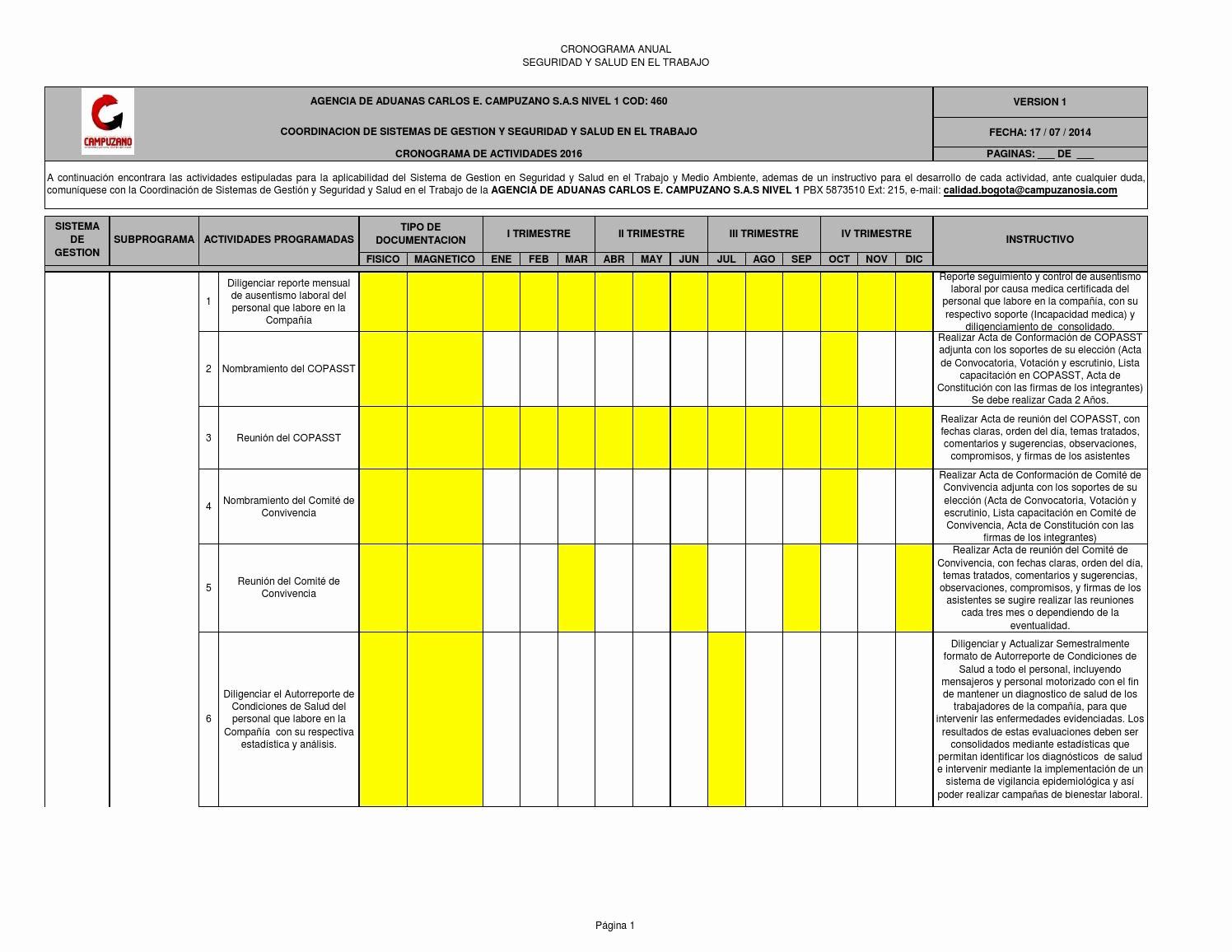 Formato Cronograma De Actividades Excel Beautiful 13 Cronograma Anual Sgsst 2016 by Sgsst Campuzano issuu