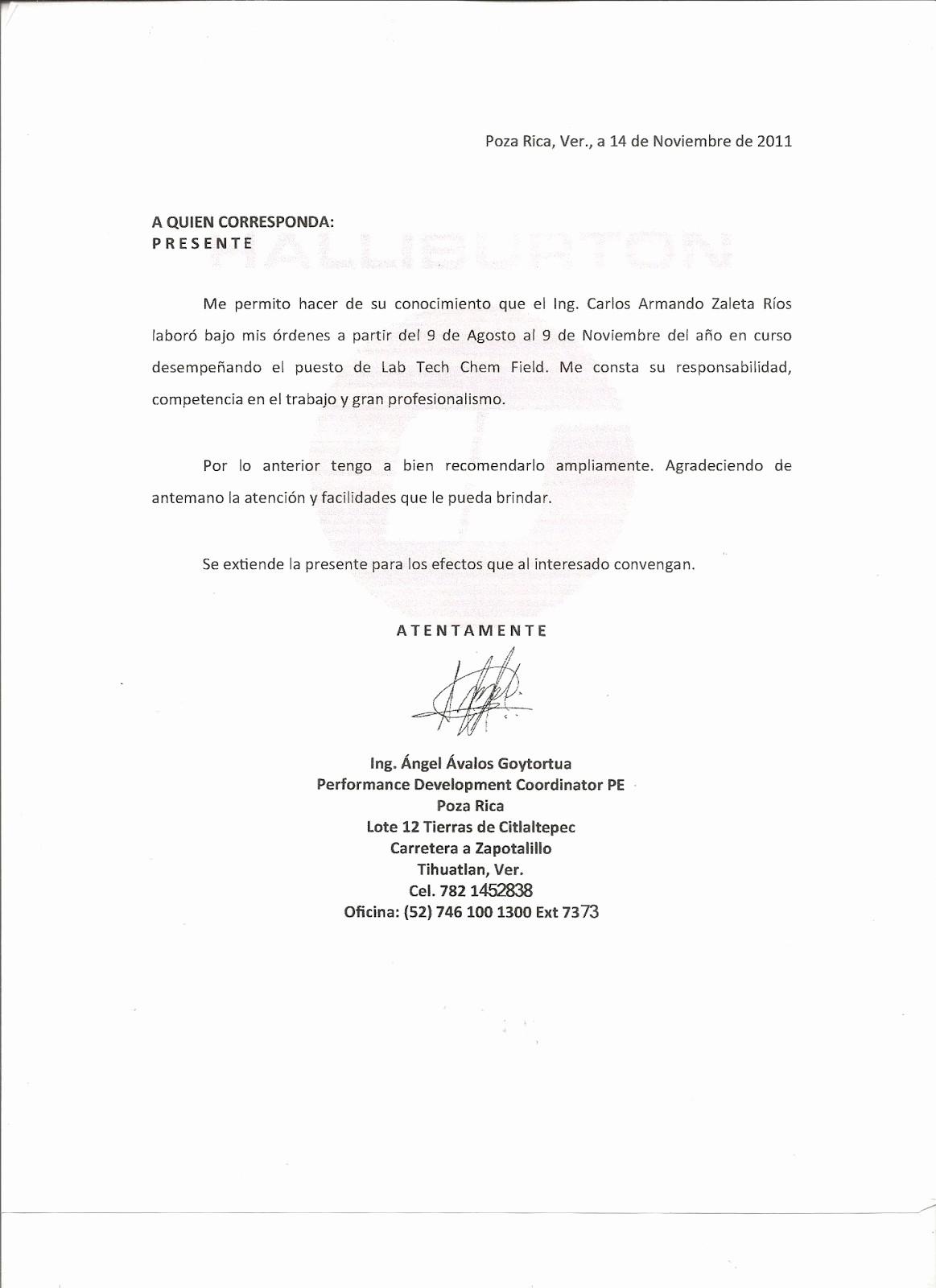Formato De Carta Recomendacion Personal New Carta De Re Endacion Personal Word Wood Scribd Mexico