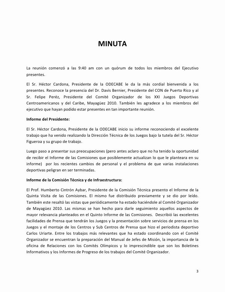 Formato De Minuta De Reunion Elegant formato De Minutas De Reuniones