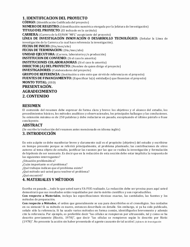 Formato De Un Informe Simple Luxury Informe Tecnico