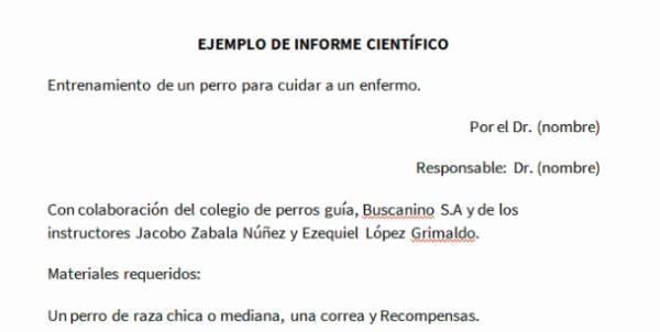 Formato De Un Informe Simple New Cómo Redactar Correctamente Un Informe 10 Pasos