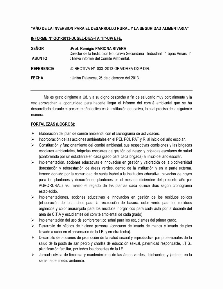 Formato De Un Informe Simple New Informe De Enfoque Ambiental