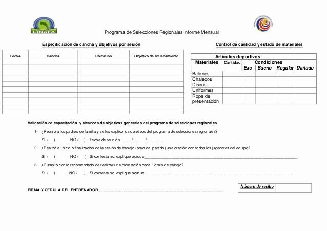 Formato De Un Informe Simple Unique formato Informe Mensual