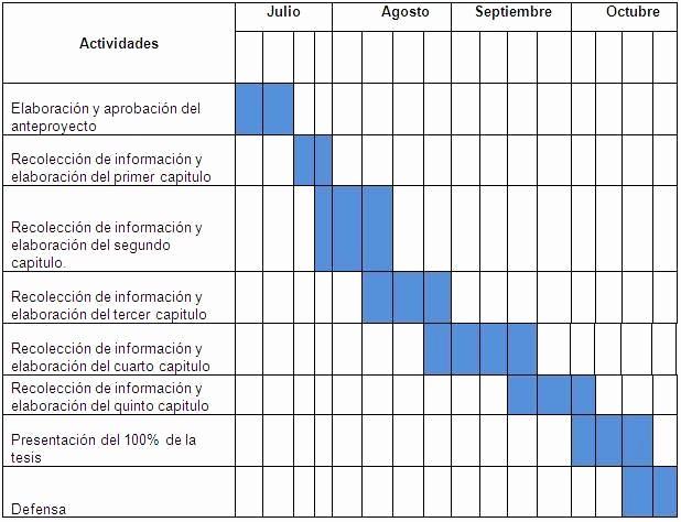 Formato Excel Cronograma De Actividades Best Of Cronogramas De Actividades En Excel
