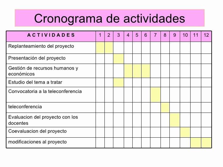 cronogramas de actividades en excel paso evolist co 4