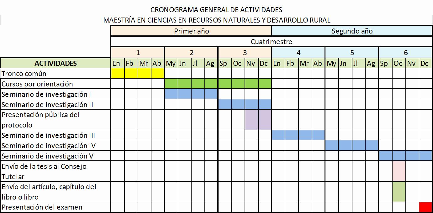 Formato Excel Cronograma De Actividades Elegant Cronograma – Posgrado Ecosur