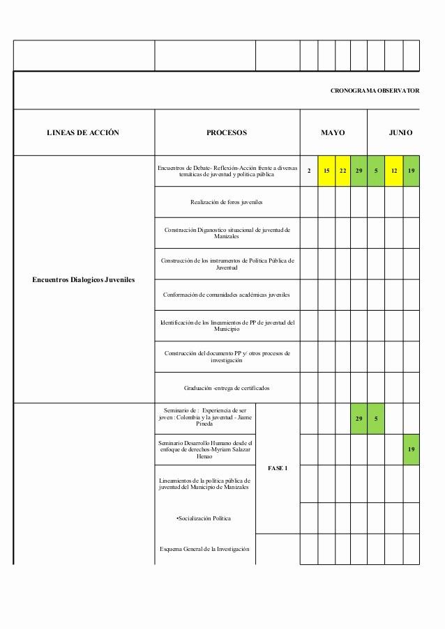 Formato Excel Cronograma De Actividades New Excel Cronograma De Actividades