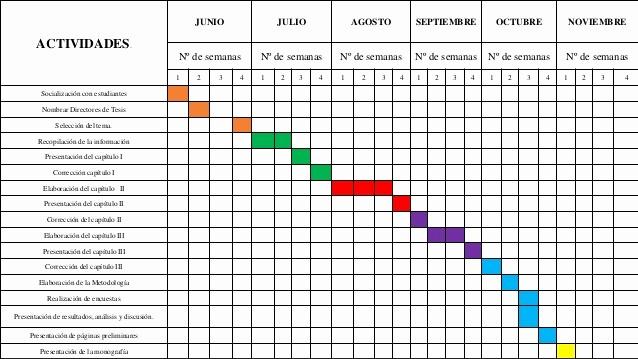 Formato Excel Cronograma De Actividades Unique Cronograma