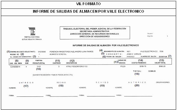 Formato Salida De Almacen Excel Best Of Dof Diario Icial De La Federación