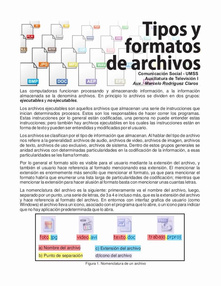 Formatos De Caratulas Para Trabajos Luxury Tipos Y formatos De Archivo