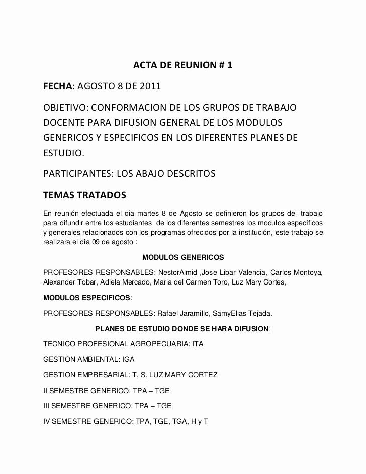 Formatos Para Actas De Reuniones Luxury Acta De Reunion