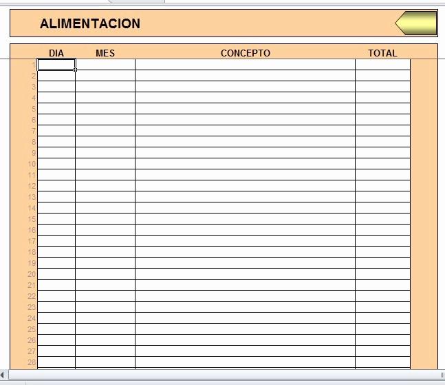 Formatos Para Control De Gastos Inspirational formato En Excel Control De Ingresos Y Gastos Personales