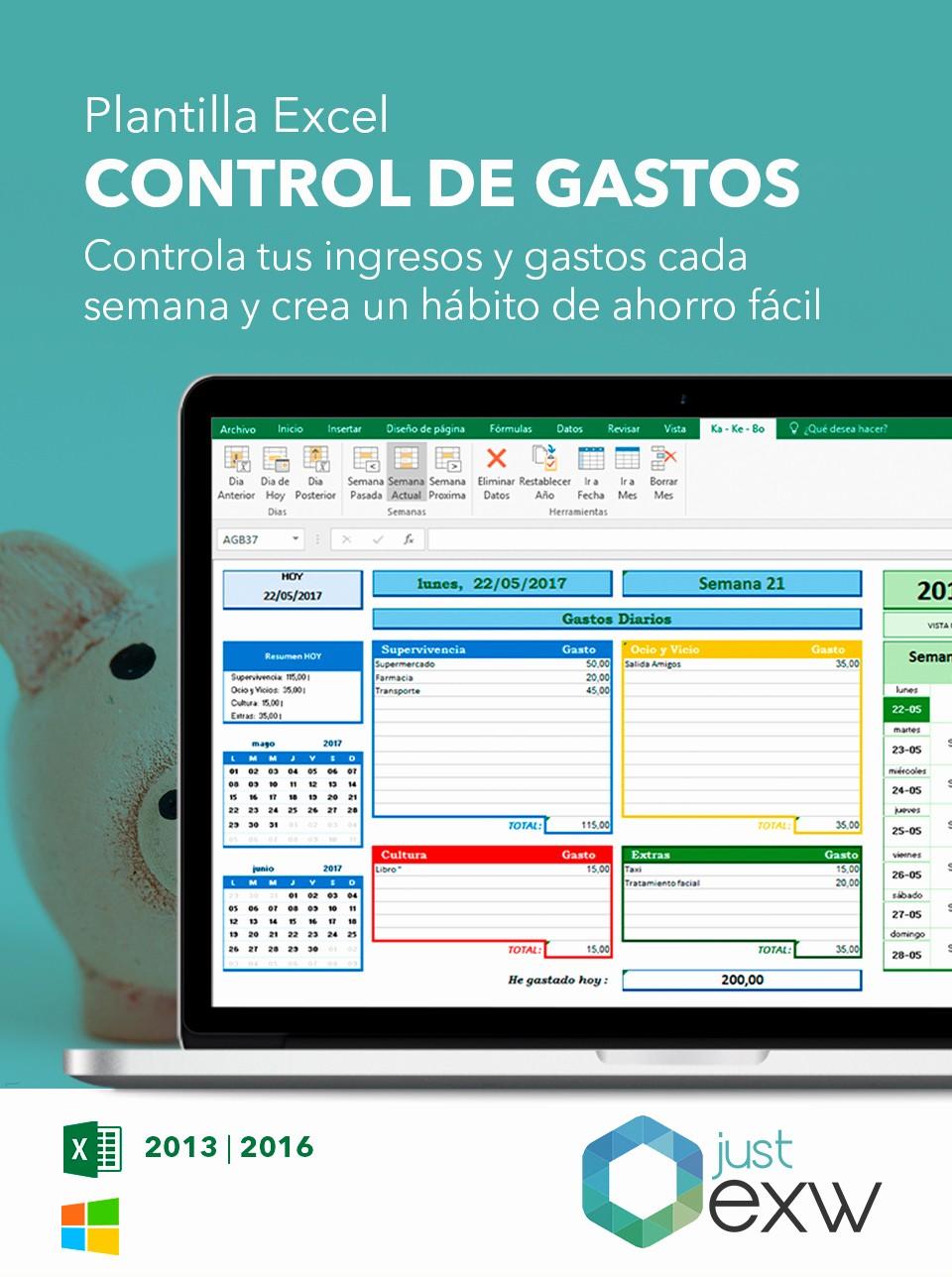 Formatos Para Control De Gastos New Contabilidad Doméstica En Excel