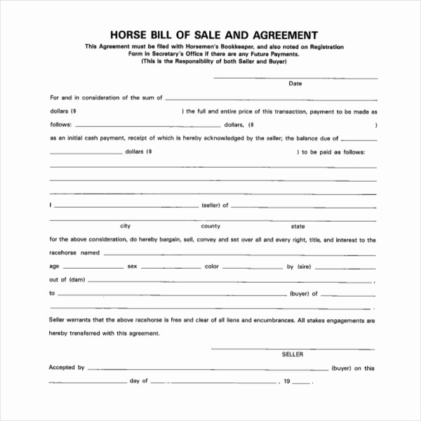 Free Bill Of Sale Contract Elegant Sample Horse Bill Of Sale forms 7 Free Documents In Pdf