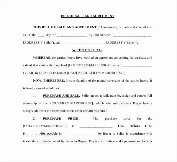 Free Bill Of Sale Contract Fresh Sample Horse Bill Of Sale forms 7 Free Documents In Pdf