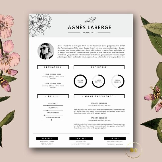 Free Creative Cover Letter Templates Unique Resume Template Feminine Resume and Free Cover Letter