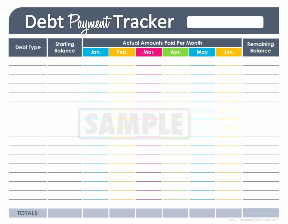 Free Credit Card Tracking Spreadsheet Awesome Debt Payment Tracker Editable Personal by Freshandorganized