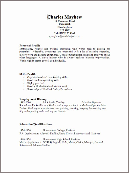 Free Curriculum Vitae Template Word Luxury Cv Templates