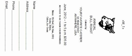 Free Editable Raffle Ticket Template Luxury 41 Free Editable Raffle & Movie Ticket Templates Free
