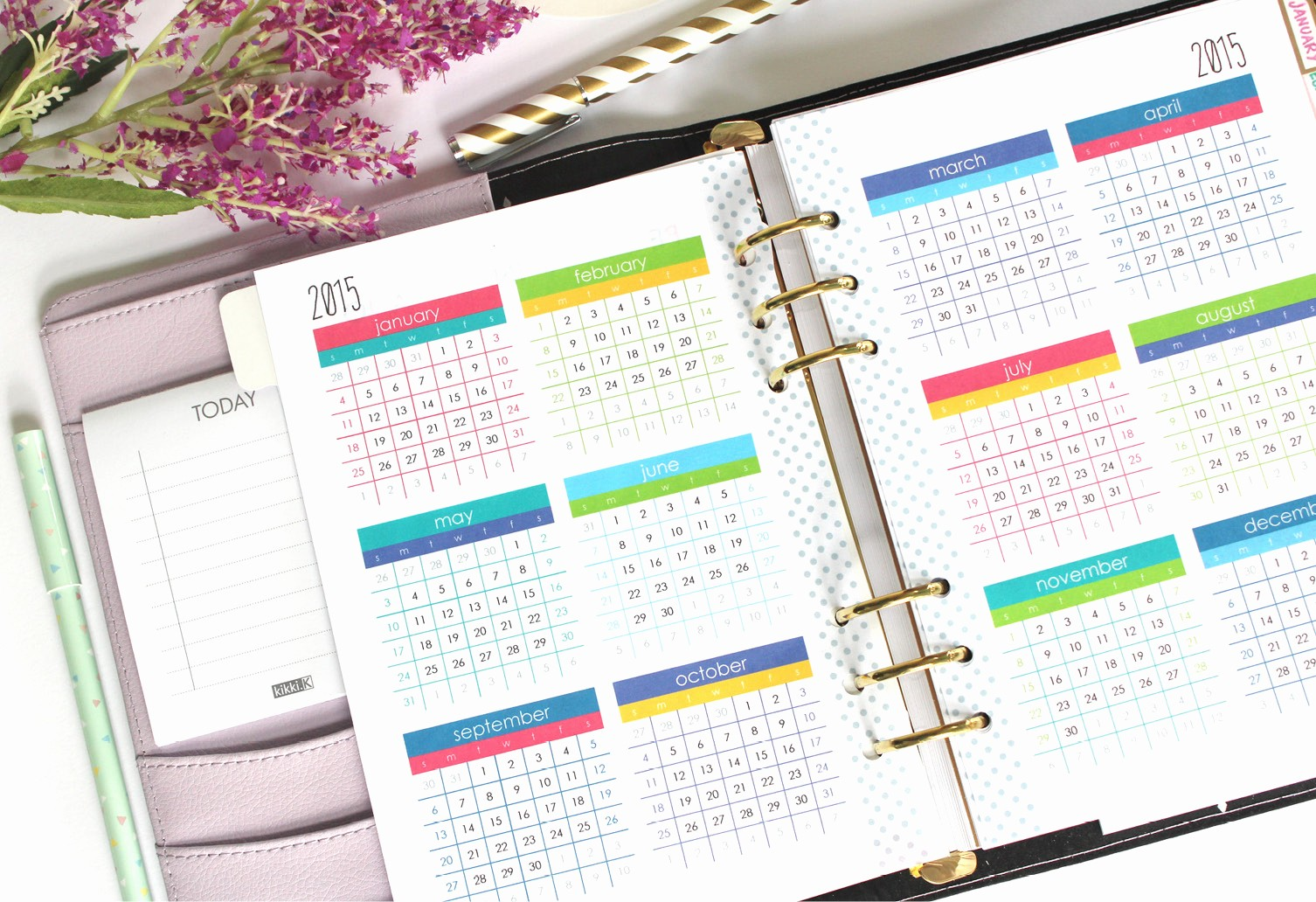 Free Printable Daily Calendar 2015 New 8 Best Of at A Glance Daily Planner Printable