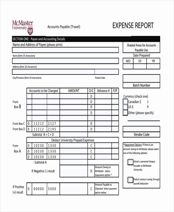 Free Printable Expense Report forms Unique Free Expense forms