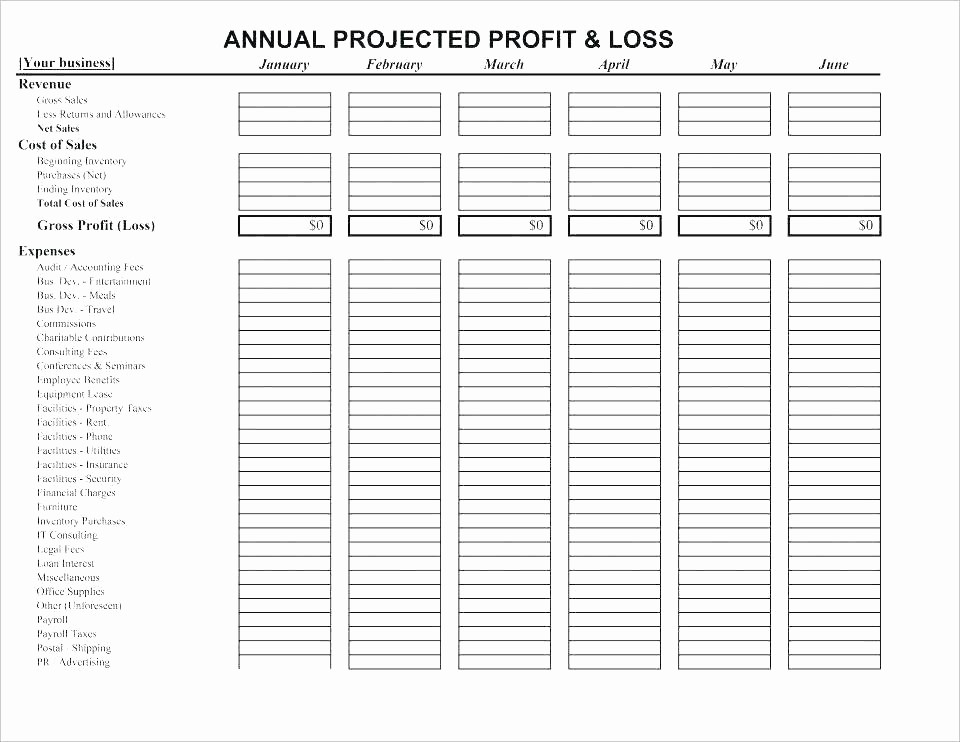 Free Profit and Loss software Awesome Excel Accounting Template software Personal Financial