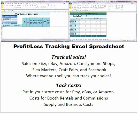 Free Profit and Loss software Inspirational Pany Balance Sheet and Profit and Loss Account format