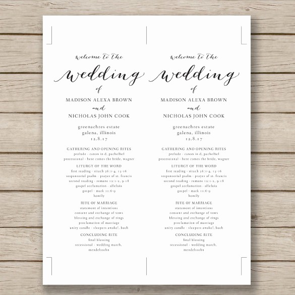 Free Program Templates for Word Best Of Wedding Program Template 41 Free Word Pdf Psd